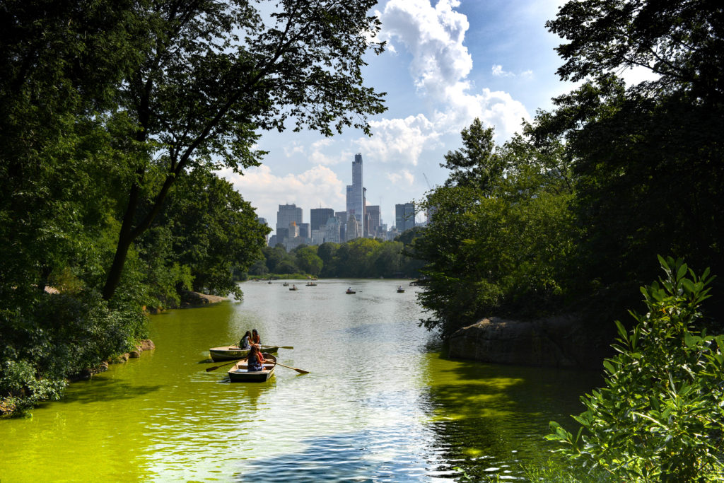 central park-